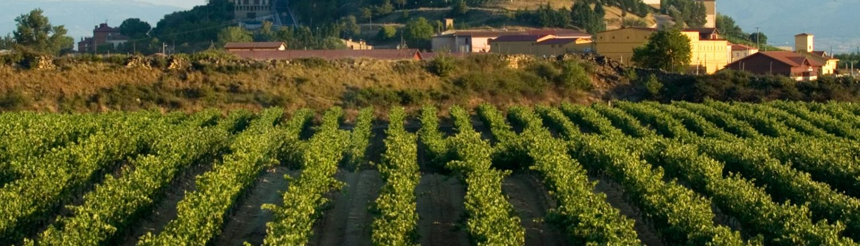 Casa rural a 30 minutos de Rioja Alavesa